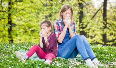 solrosfrön allergi symtom